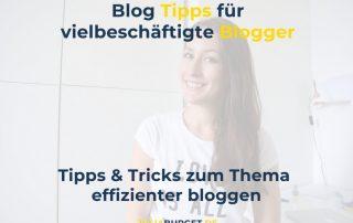 Effizienter bloggen Arbeitsbuch